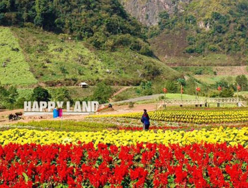 TOUR MỘC CHÂU - HAPPY LAND (2N1Đ)